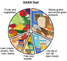 dash diet and snap guidelines